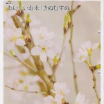 JAつやま広報誌「シャイン」3月号