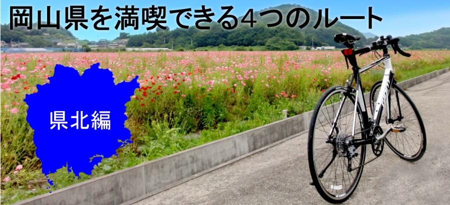 爽快!サイクリング特集♪